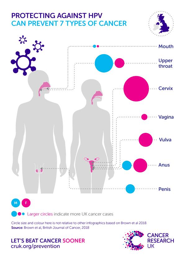 how papillomavirus cause cancer