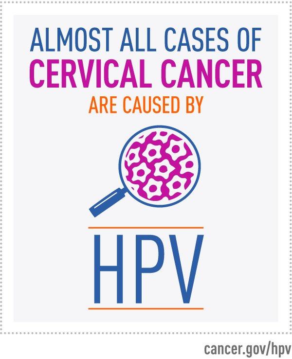hpv which causes cervical cancer o que e papiloma virus em caes