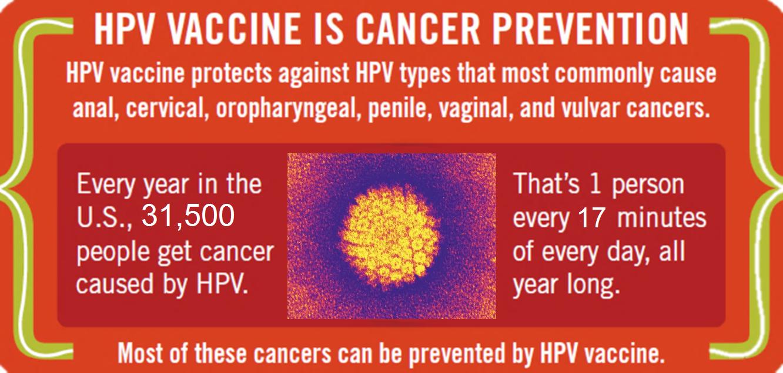 human papillomavirus vaccine discovery detoxifiere ficat pastile