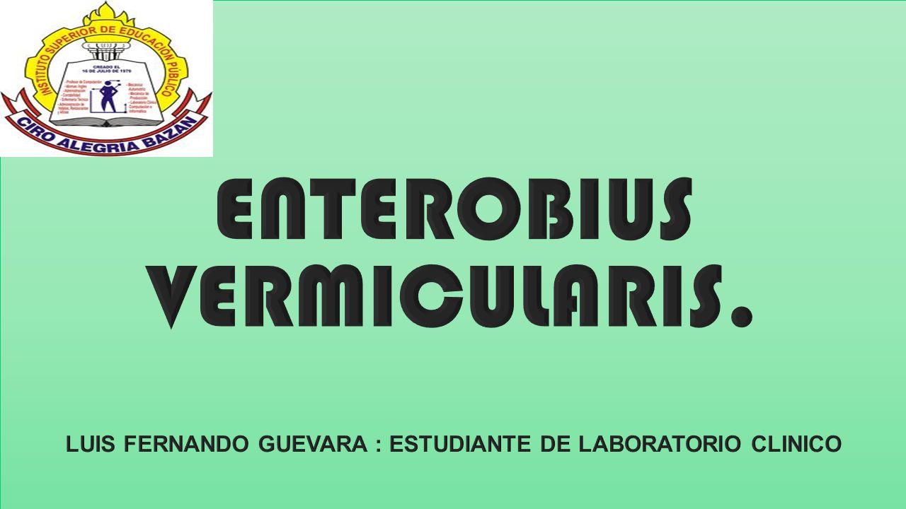 enterobius vermicularis leczenie viermi in mancarea kfc