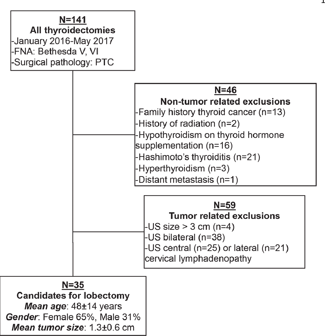 THYROIDECTOMY - Definiția și sinonimele thyroidectomy în dicționarul Engleză