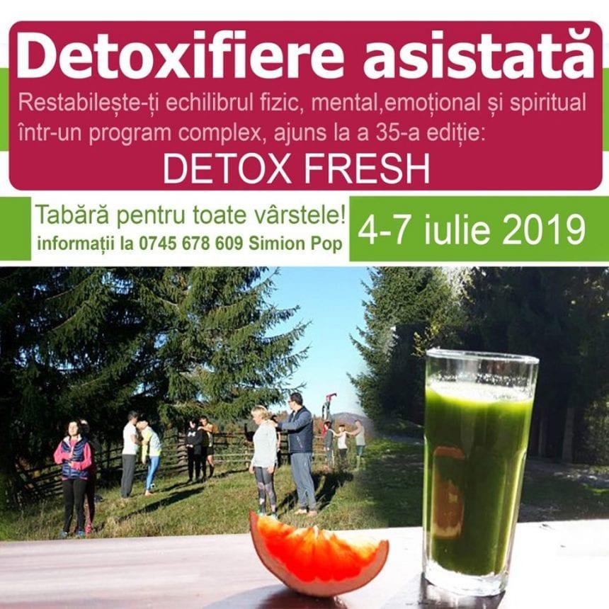 Tabăra Detox Viața Verde Viu - Ediția de toamnă, 2019. Invitație la transformare!