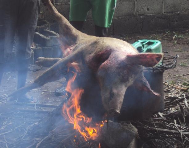 Gulaș delicios cu carne de vită sau porc - Nimeni nu.