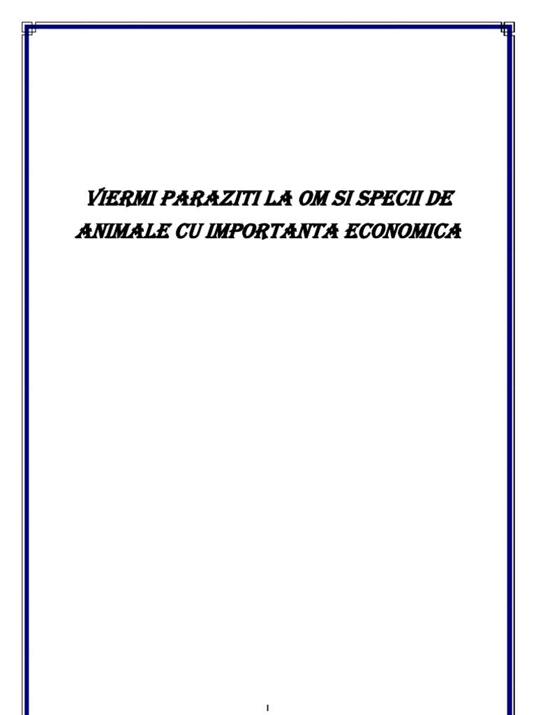 Vierme - Wikipedia