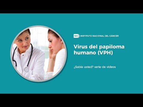 virus del papiloma humano tambien se busco