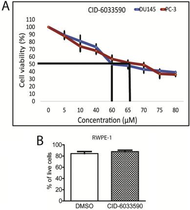 cancer metastatico cid