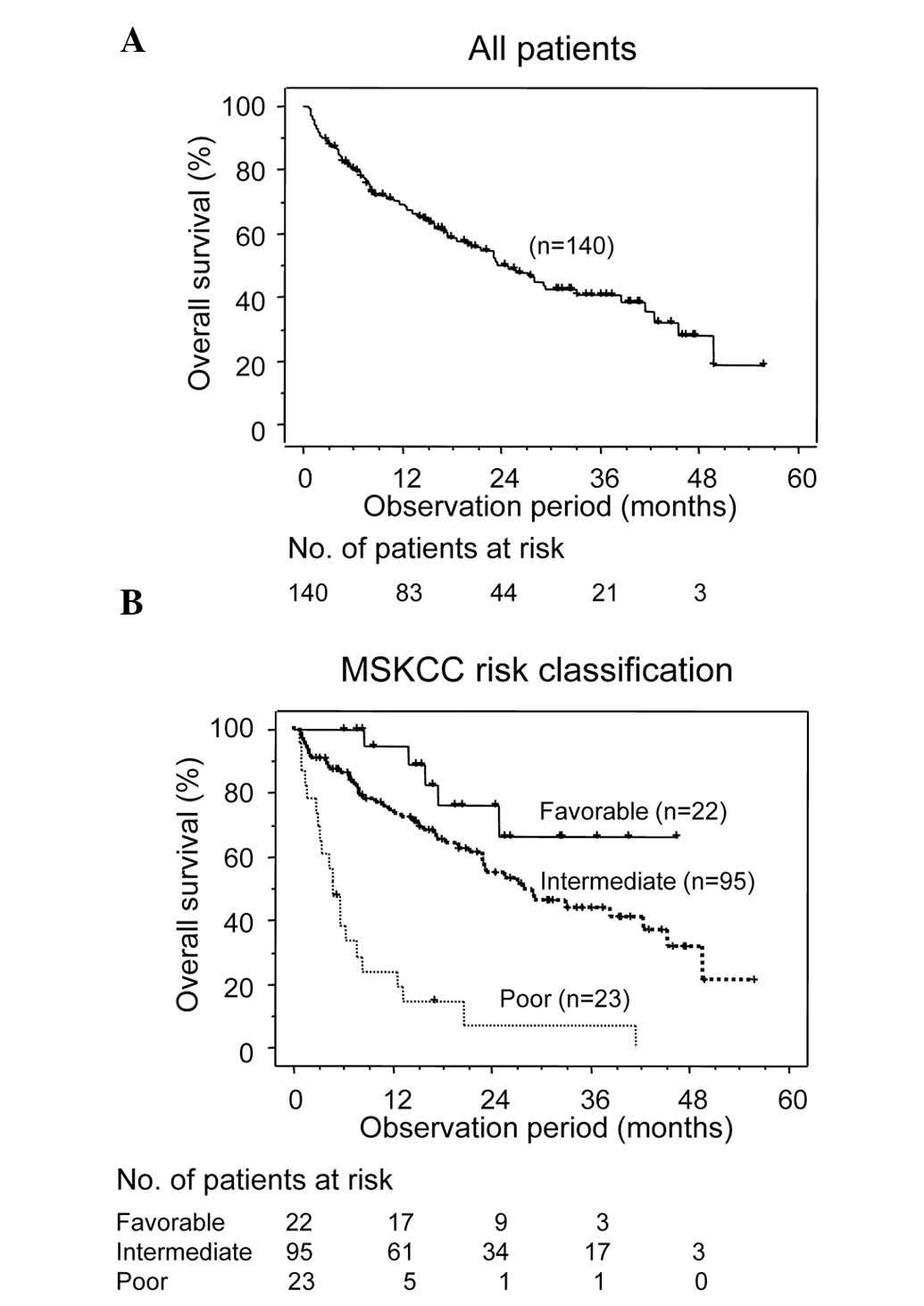 renal cancer mskcc