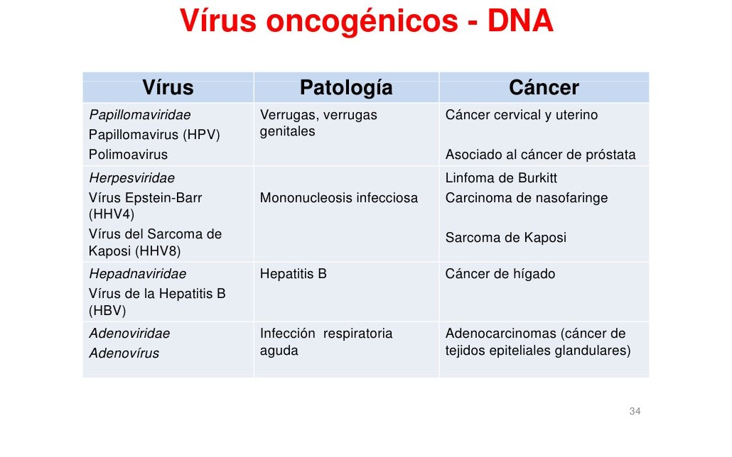 imunologie | Doriana Papala - primariabeuca.ro