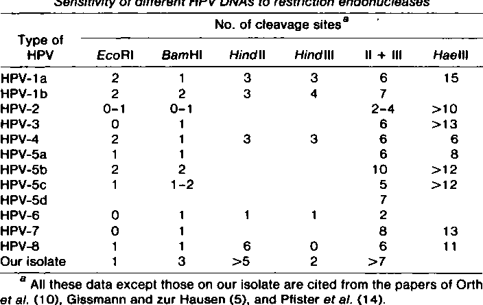 hpv virus in hindi